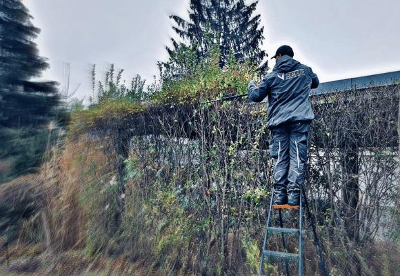 Grünanlagenpflege STEMS